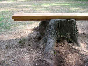Bench (table to chair)